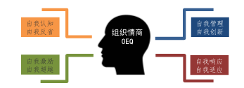 爱维龙媒:奔跑吧,文化!——企业文化落地实施的思路与方法